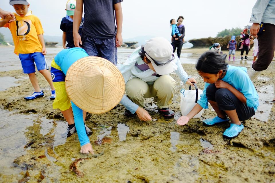 夏休みの終わりに、沖縄の干潟へ出かけて子どもたちと海の生物探しに興じる!!